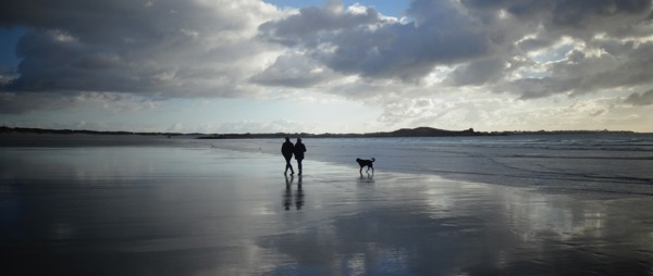 image of two people walking along beach with their dog
